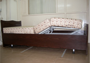 Motorized Legrest Electric Beds